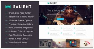 Salient Portfolio wordpress theme